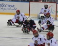 Five Ugra players will take part in the Sledge Hockey World Championships.